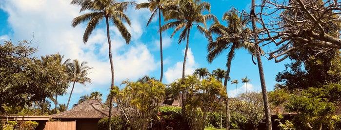 Na 'Aina Kai Botanical Garden is one of Kauai.