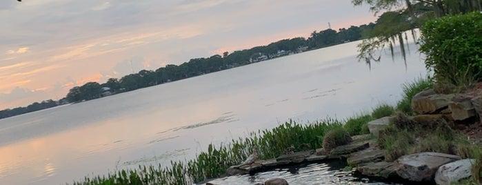 Lake Island is one of Shannon : понравившиеся места.