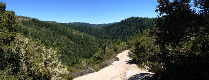 Jackson Flats Trail is one of HWY1: SF to Davenport.