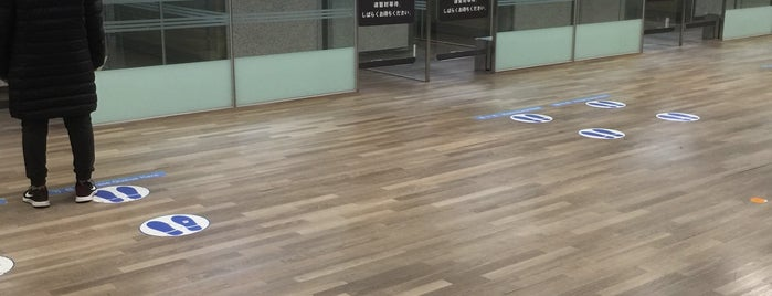 Immigration Counter (APEC Lane) is one of 韓国.