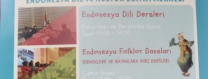 Endonezya Cumhuriyeti İstanbul Başkonsolosluğu is one of Lieux qui ont plu à Riefa Ayu.
