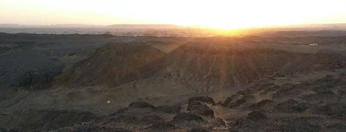 Bahariya Oasis is one of AFRICA - To Do.