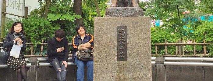 忠犬ハチ公 is one of Odd And Thought-Provoking Monuments.