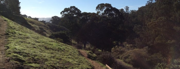 Glen Canyon Park is one of SF discovery.