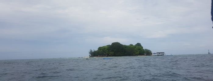 Pulau Samalona is one of Lugares favoritos de Fani.