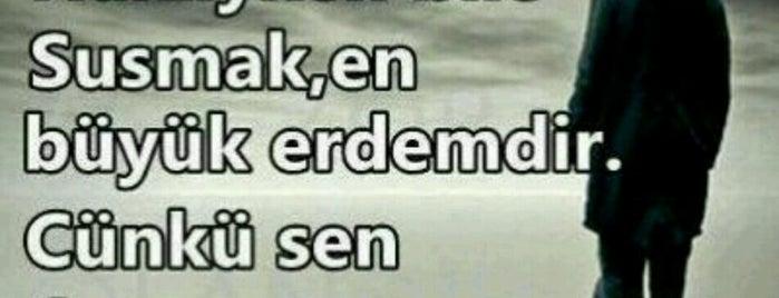 Serap Cafe is one of Posti che sono piaciuti a Ömer Yasin.