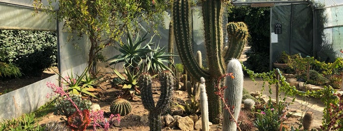Jardin exotique de Roscoff is one of สถานที่ที่ Simon ถูกใจ.