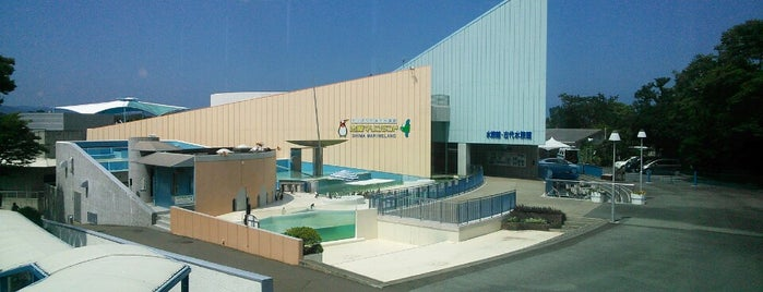 Shima Marineland is one of Tempat yang Disukai 商品レビュー専門.