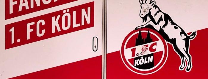 Fanshop 1. FC Köln is one of Fanático pelo o Foursquare.