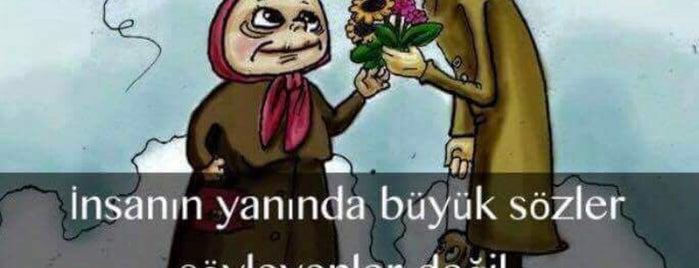 perininin minikleri anaokulu is one of Orte, die Şule gefallen.