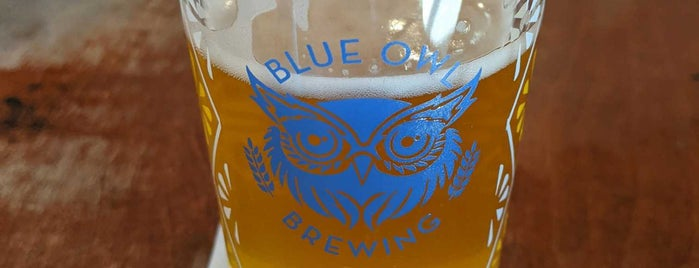 Blue Owl Brewing is one of Austin Tx.