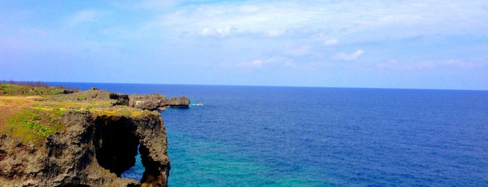 Cape Manzamo is one of my Okinawa trip.