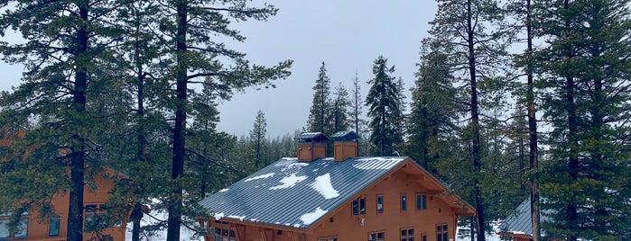 Sugar Bowl Ski Resort is one of Orte, die Angelle gefallen.