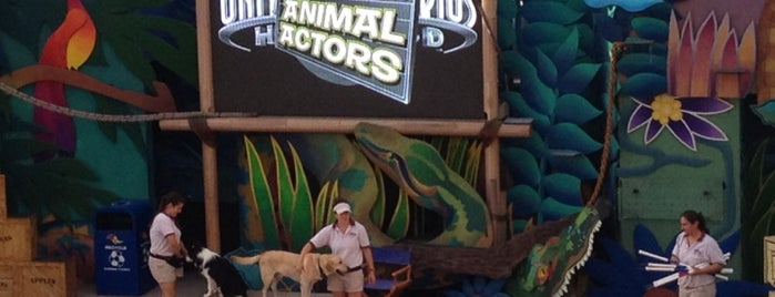 Universal's Animal Actors is one of Tempat yang Disukai Murat.
