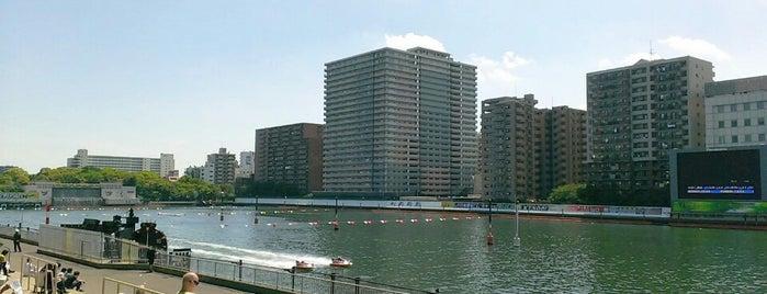 ボートレース平和島 is one of Ktさんのお気に入りスポット.