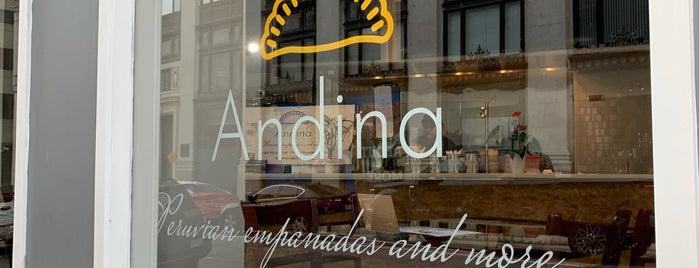 Andina is one of สถานที่ที่ Rachel ถูกใจ.
