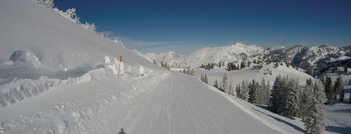 Alta Ski Area is one of Rachel : понравившиеся места.