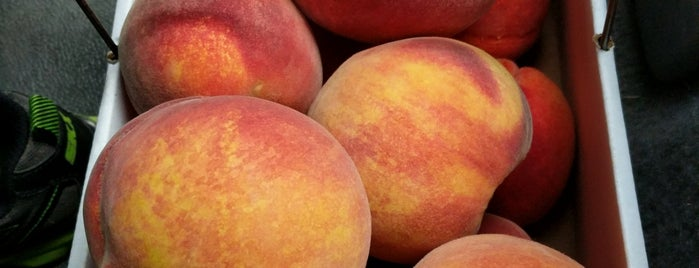 Webb's Orchard is one of 100 Foods in 100 Counties (NC).