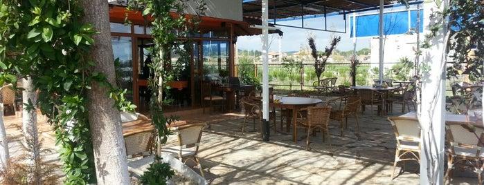 Meydanoglu Koy Kahvaltisi & Kofteci is one of Rıdvan: сохраненные места.