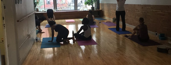 Yoga To The People II is one of favorite activities.