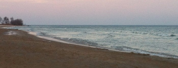 Bradford Beach is one of Must See Things In Milwaukee.