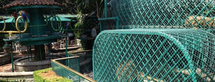 Jardín del Corregidor is one of Tesoros CDMX.