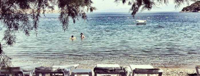 Selvi Beach is one of Bodrum KT.