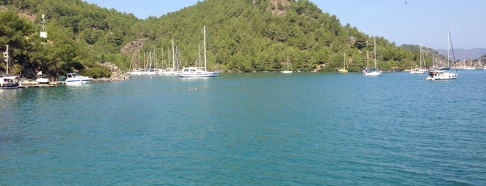 Orhaniye Koyu is one of Marmaris & Datça & Knidos & Selimiye.