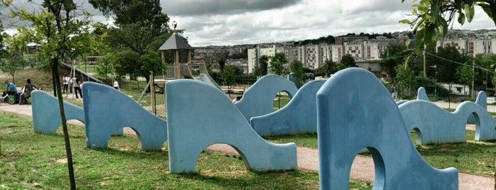 Parco di Monte Ciocci is one of Tempat yang Disukai Andrea.