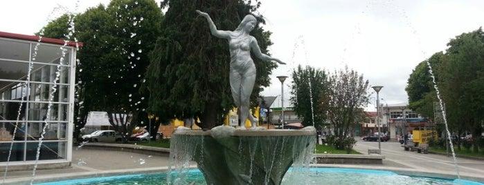 Plaza de Armas is one of Chiloe 2012.