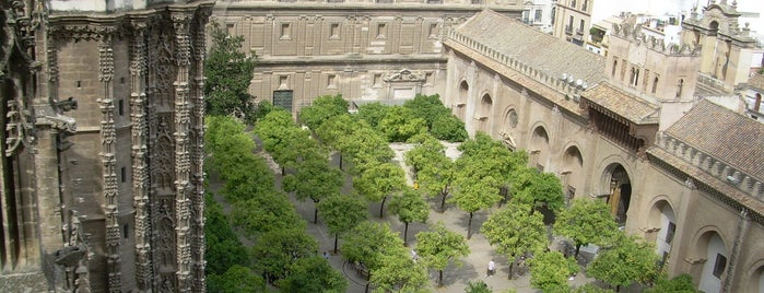 Patio de los Naranjos is one of Seville.