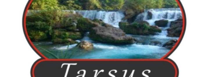 Tarsus Ocakbaşı is one of Istanbul.