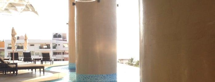 Signature Lounge is one of Puerto Vallarta.