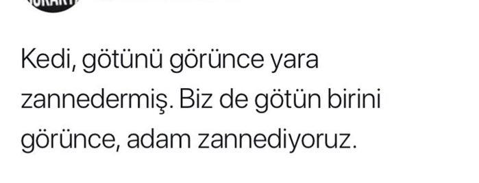 Kurtkoy Uydu Kent is one of istanbul.