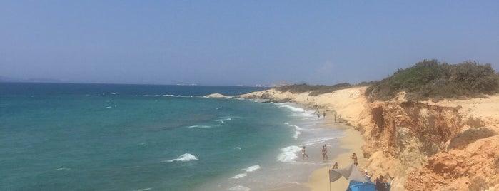Alyko Beach is one of Locais curtidos por Vangelis.