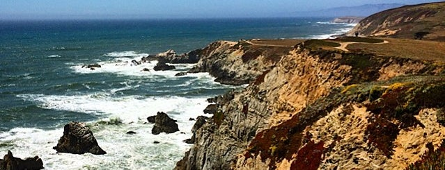 Bodega Head is one of California Favorites.