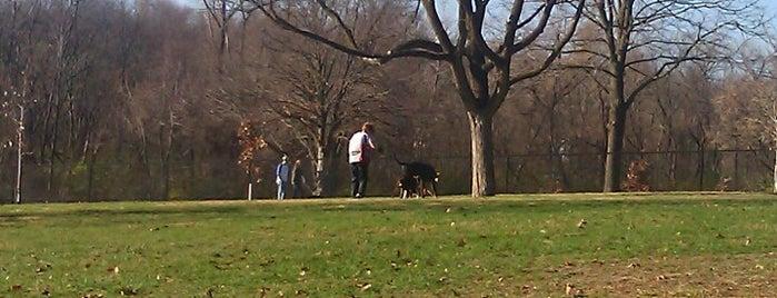 Ewing Dog Park is one of DSM: Explore Indianola Avenue.