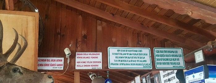 Enver Yalçın Yörük Kahvaltısı & Müzesi is one of muğla.