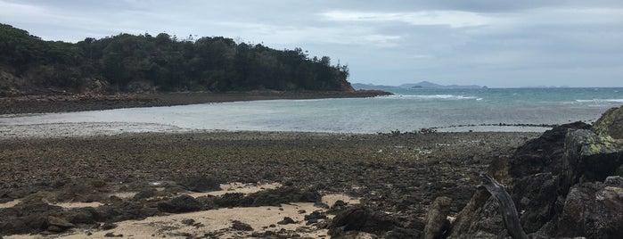 escape beach is one of Hamilton Island.