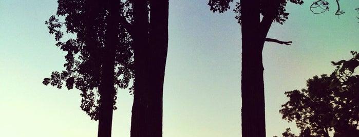 Northmoor Park is one of Locais curtidos por Anna.