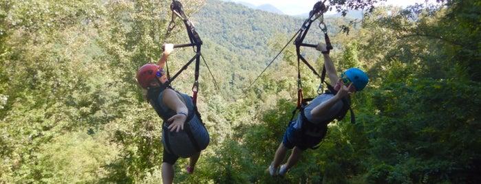 Navitat Zipline Adventure is one of Asheville.