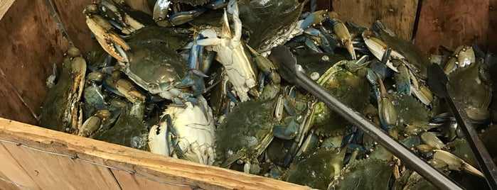 New Orleans Bay Seafood is one of Kyle 님이 좋아한 장소.