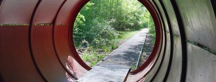Natur-Park Schöneberger Südgelände is one of 4sq365de (1/2).