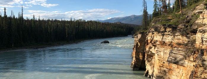 Athabasca Falls is one of Tom 님이 좋아한 장소.