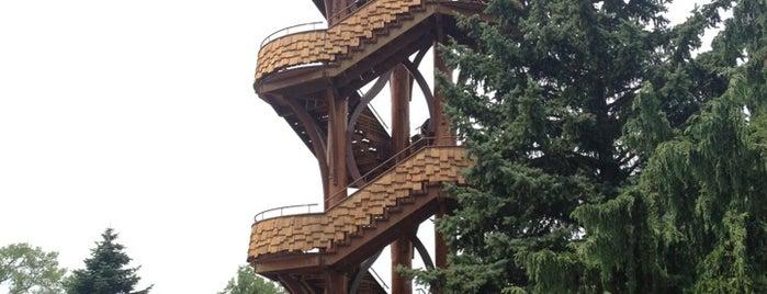 Cox Arboretum Tower is one of Tempat yang Disukai Josh.
