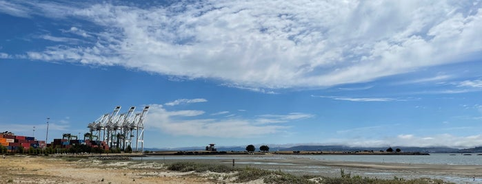 Middle Harbor Shoreline Park is one of Music Trivia.