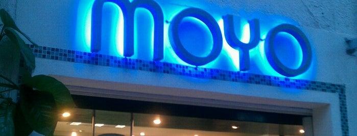 Moyo is one of Playa del Carmen.