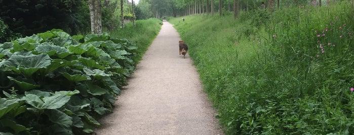 Westerpark is one of Lieux qui ont plu à Erin.