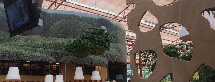 Tuincentrum Osdorp is one of Lieux qui ont plu à Erin.