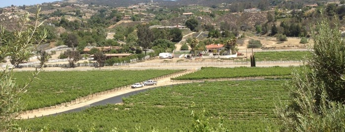 Cougar Vineyard & Winery is one of Award Winning Temecula Wineries.